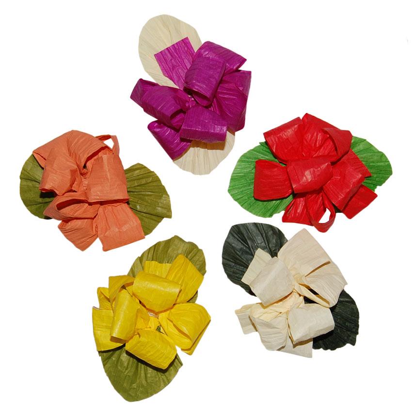 Set 5 Flores Colores